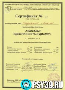 Интенсив. Идентичность и диалог. Московский Гештальт Институт 2013.