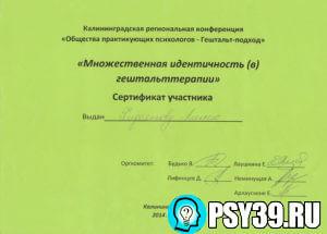 Множественная идентичность. Московский Гештальт Институт 2014.