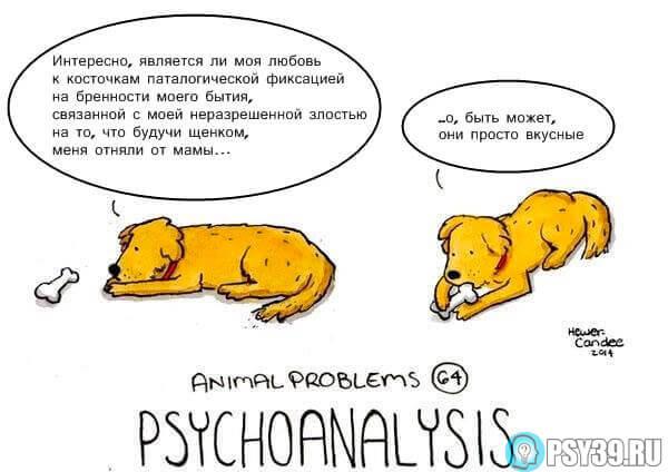 Психоанализ - Проблемы животных