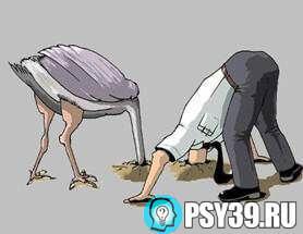 Сколько в темноте психологов